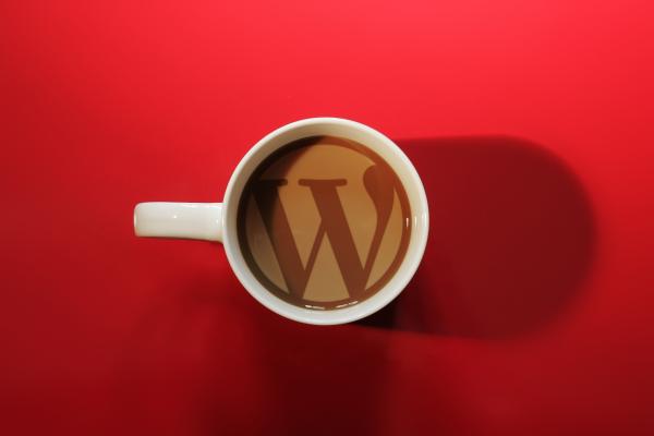 WordPress-ն արտոնյալ դի՞րք ունի Google-ի որոնման արդյուքներում․․․